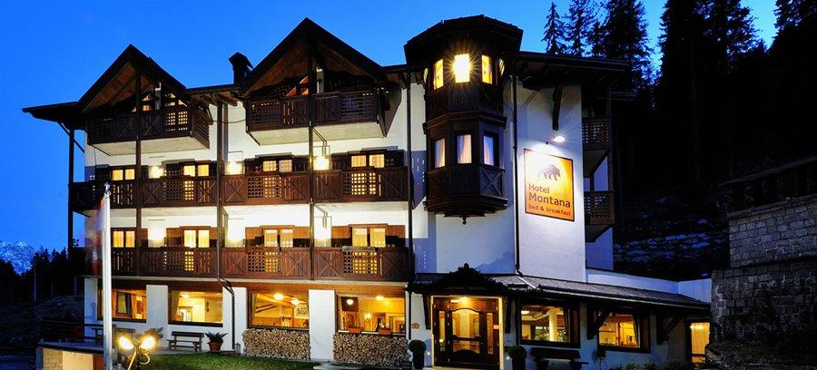Hotel Montana (Campiglio) - Hotel